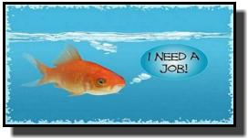jobfish